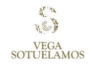 Vega Sotuelamos